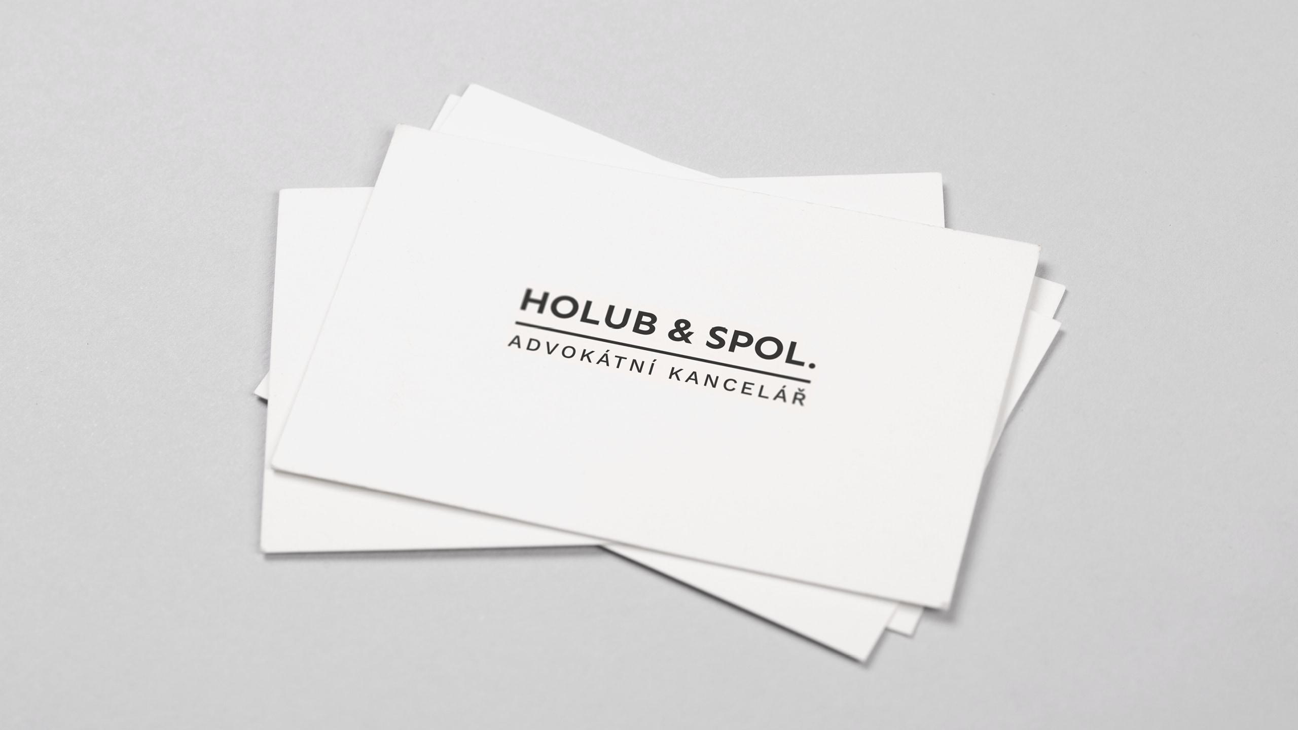 Holub_a_spol_viz_