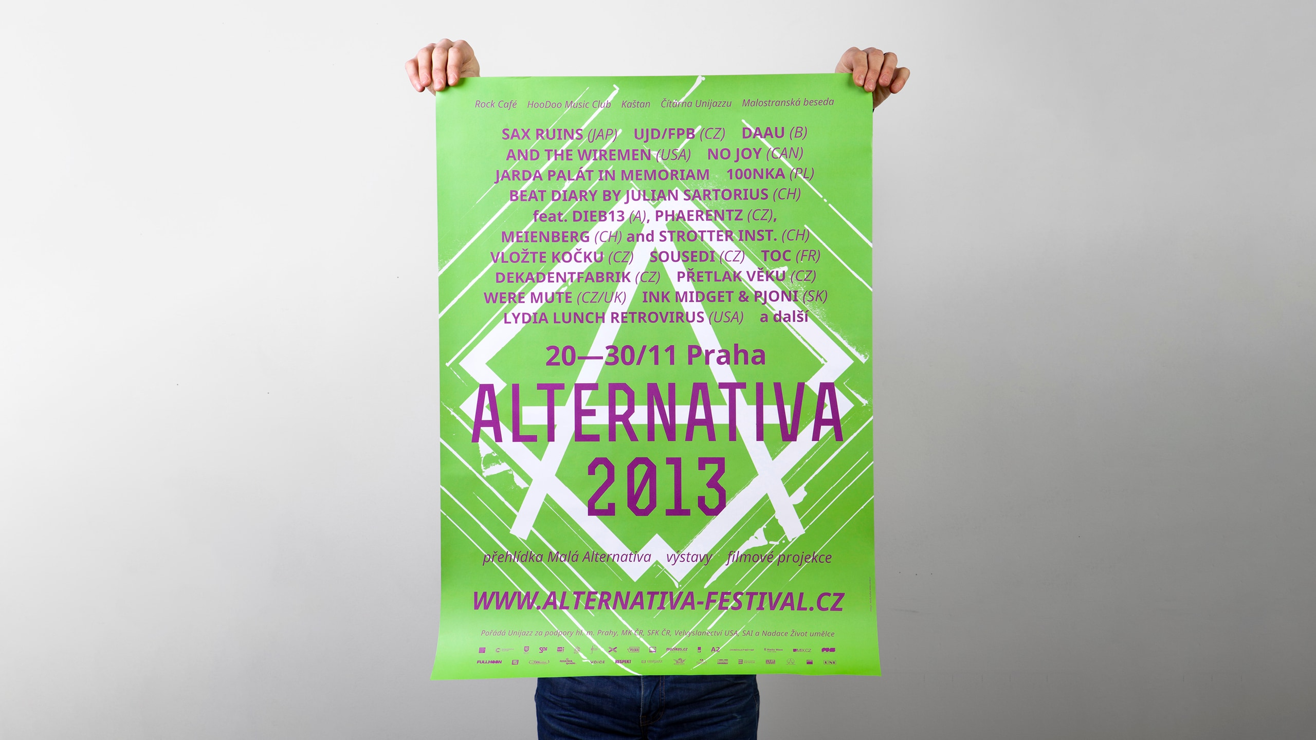 Alternativa_2013_1